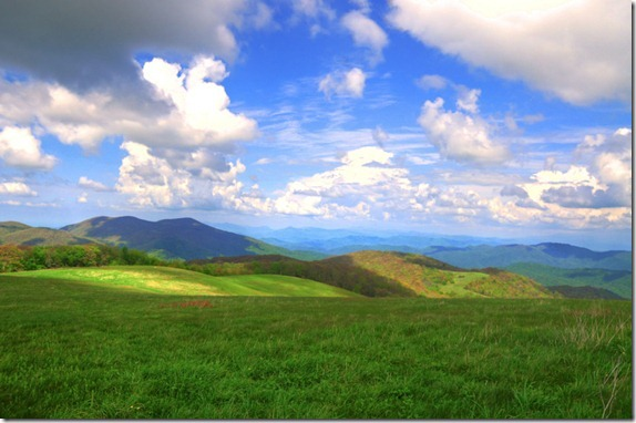 max patch--2