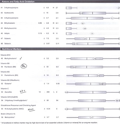 Organic Acid Profile Test results