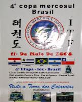 Copa Mercosul 2008 - 001.jpg
