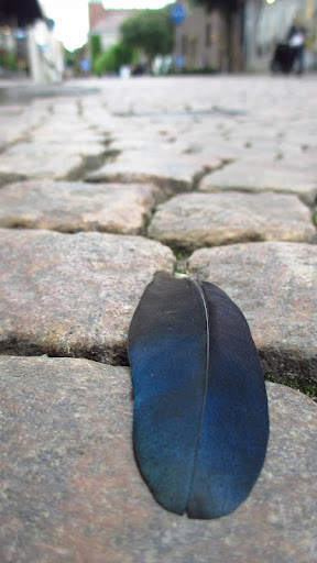 …I found it on a cobblestone street in Gothenburg!