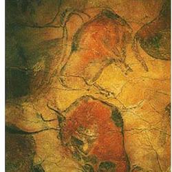 19 - Bisontes de la Gran Sala de Altamira