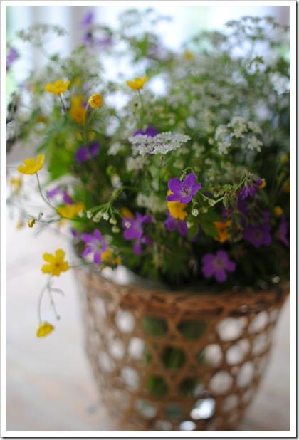 blommor 008