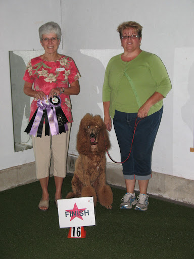 Finnegan has won close to 80 ribbons!