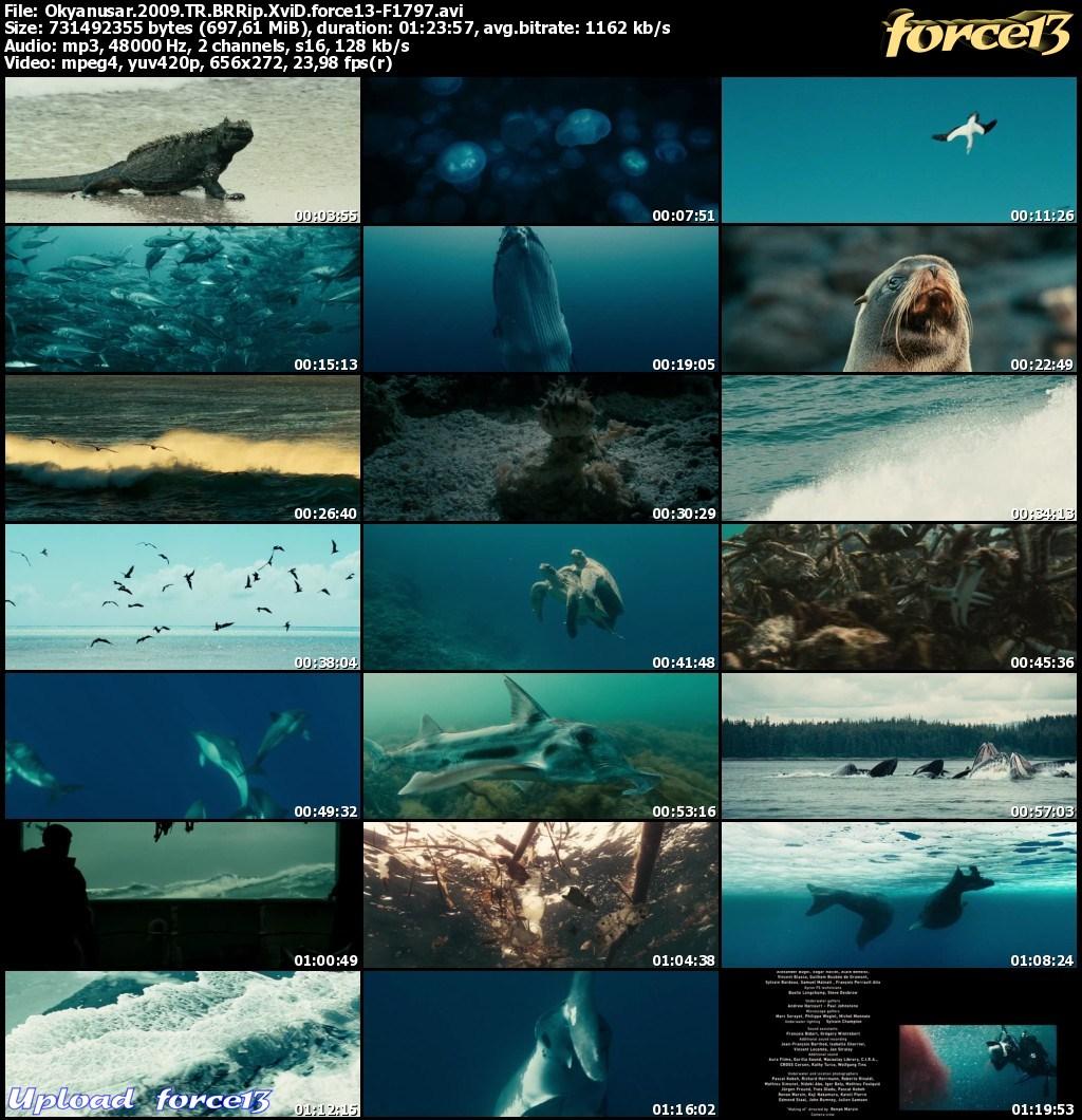 Okyanuslar   Océans   2009   BRRip XviD   Türkçe Dublaj  Img4e746a29e7d284530163224a0058c8e0