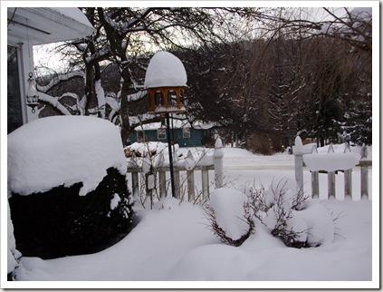 snow again 006