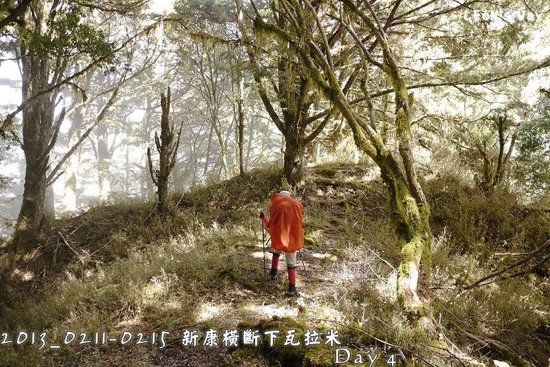 blog_0595