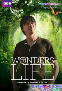 Những Điều Kì Diệu Của Sự Sống - Wonders of Life (2013)