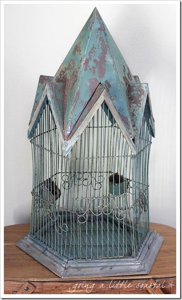 bird cage4_edited-1