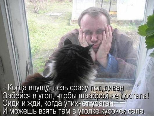 c150937266209ec99a793faba89_prev