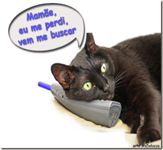 gato_perdido
