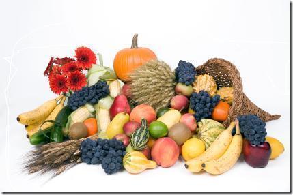 Eating A Healthful Vegetarian Diet – Vegetarian Friend