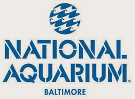national aquarium baltimore