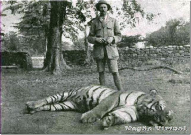 a tigresa champawat