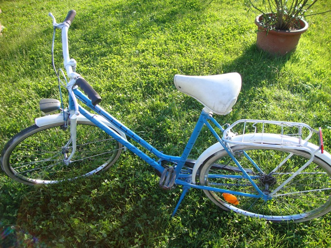 blue white freedom bike