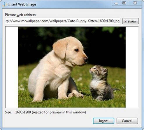 Windows_Live_Writer_insert_image_web_address