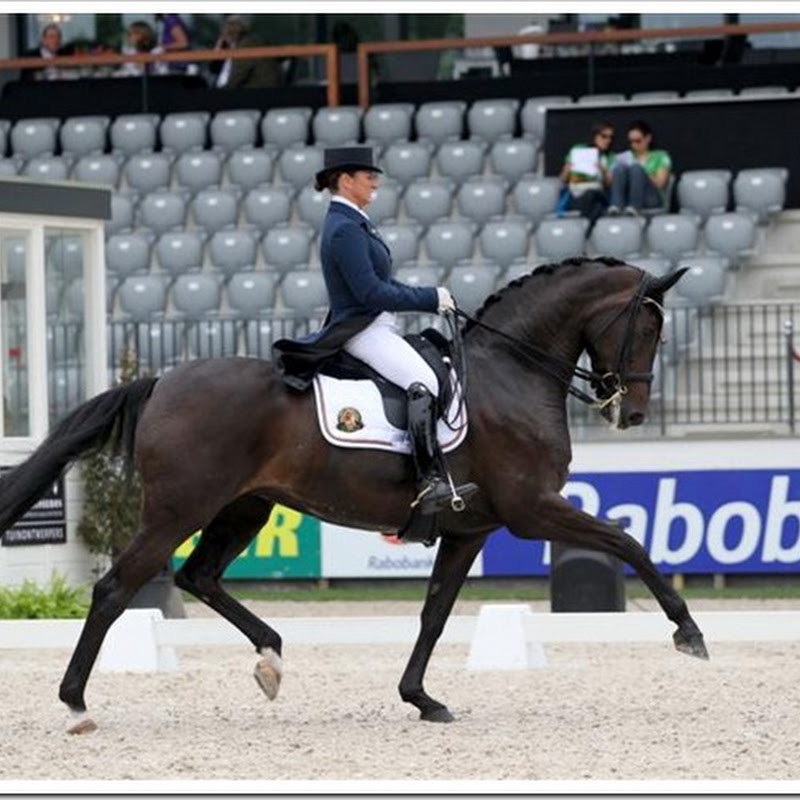 Good luck to Claudia and Donnerfee !