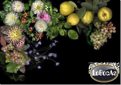 LoBocAs2014bkack00