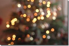 Christmas 020