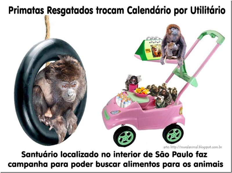 primatas-calendario