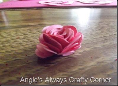 blog roses 015