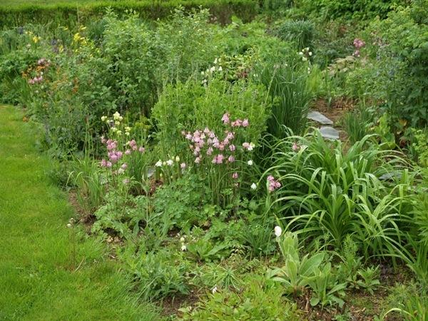 2011-06-06 Hagen i juni (50)
