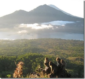 Bali, Autora Thaís Costa
