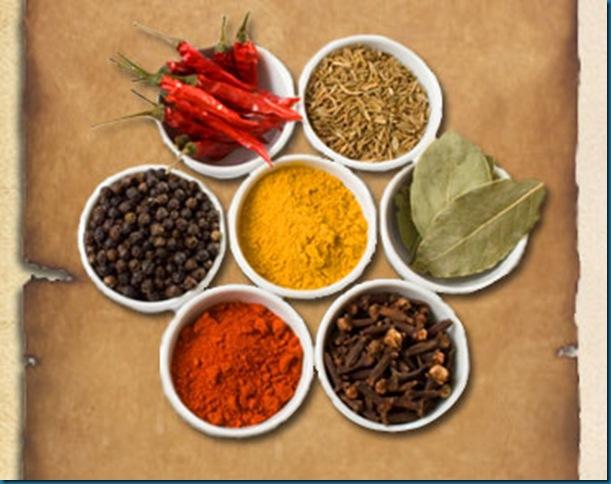 spices - pungent taste