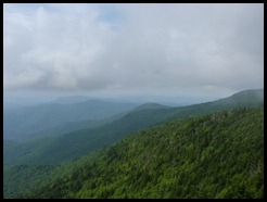 View from Roan Mountain S.P TN