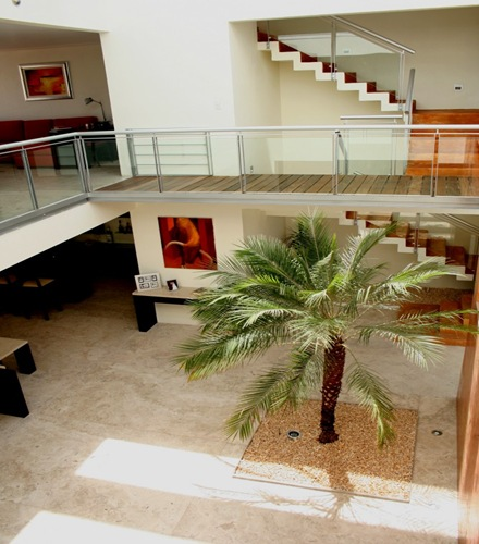 casa-de-lujo-decoracion-interior-con-palmeras