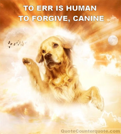 To aire is human to forgive is divine