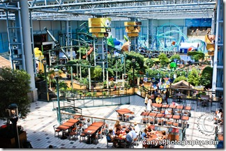 Mall of America-14