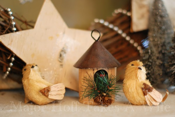 Christmas Birds with house and pinecones