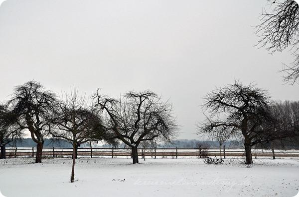 Schneesonntag 20zwölf (14)