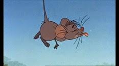 34 la souris