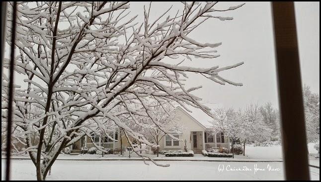 Snow, Winter Wonderland (1)
