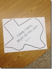 texas what do you see book