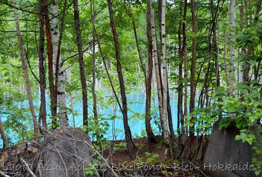 Lagoa Azul - Biei - Hokkaido - Glória Ishizaka - 3