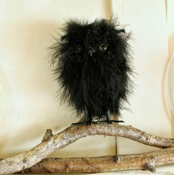 Halloween Owl Decor via homework | carolynshomework.com