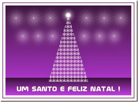 postal cartao de natal sn2013_45