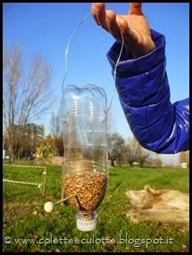 Ghiotte leccornie per gli uccellini dell'OrtoQua (31)_thumb[1]