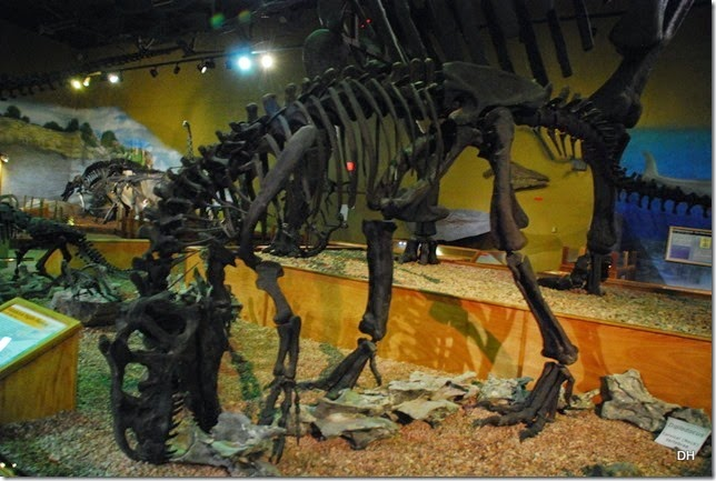 07-12-14 B Wyoming Dinosaur Center (180)