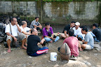 Présentation des coqs avant le combat dominical