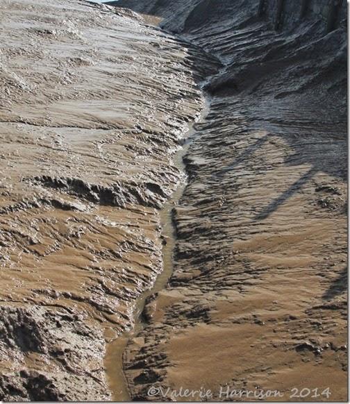 5-Wigtown-mud