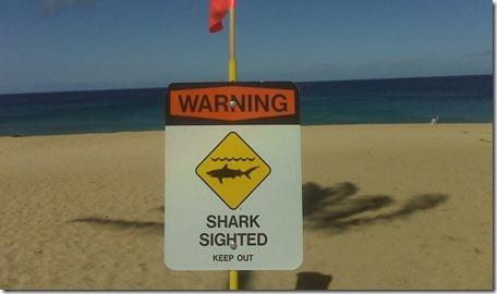 Las playas más peligrosas del mundo5