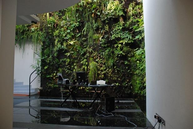 vertical garden by patrick blanc 10