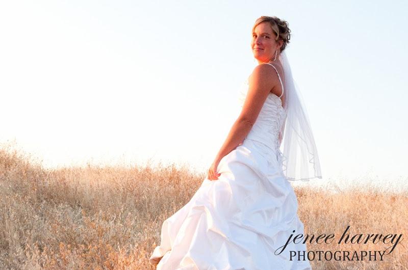 Lauren Trash the dress-7