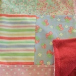 Little Blossom Quilts June