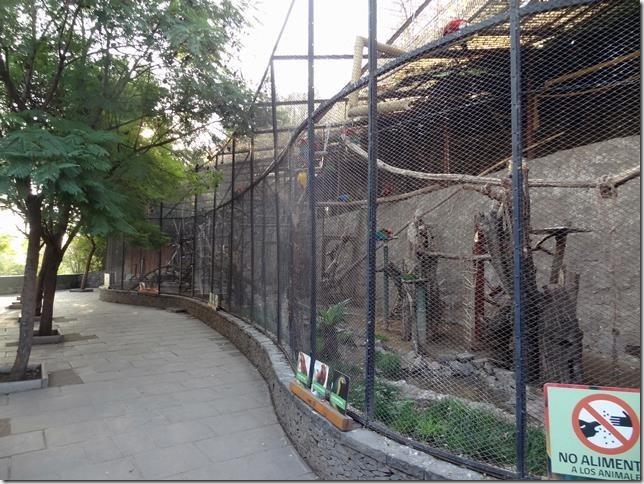 Santiago_Zoo_DSC03929