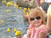 duck race 2011 (2)