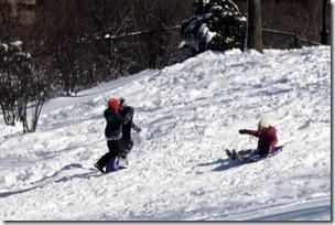 sledding-central-park-nyc